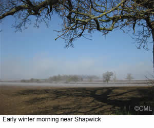 Shapwick early morning