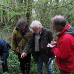 Admiring Herb Paris (PRG, CML, GL) - Prior's Wood (ITS)