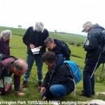 Studying Limestone Outcrop - Cannington Park (MHE)
