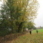 surveying-at-barford-park-gl