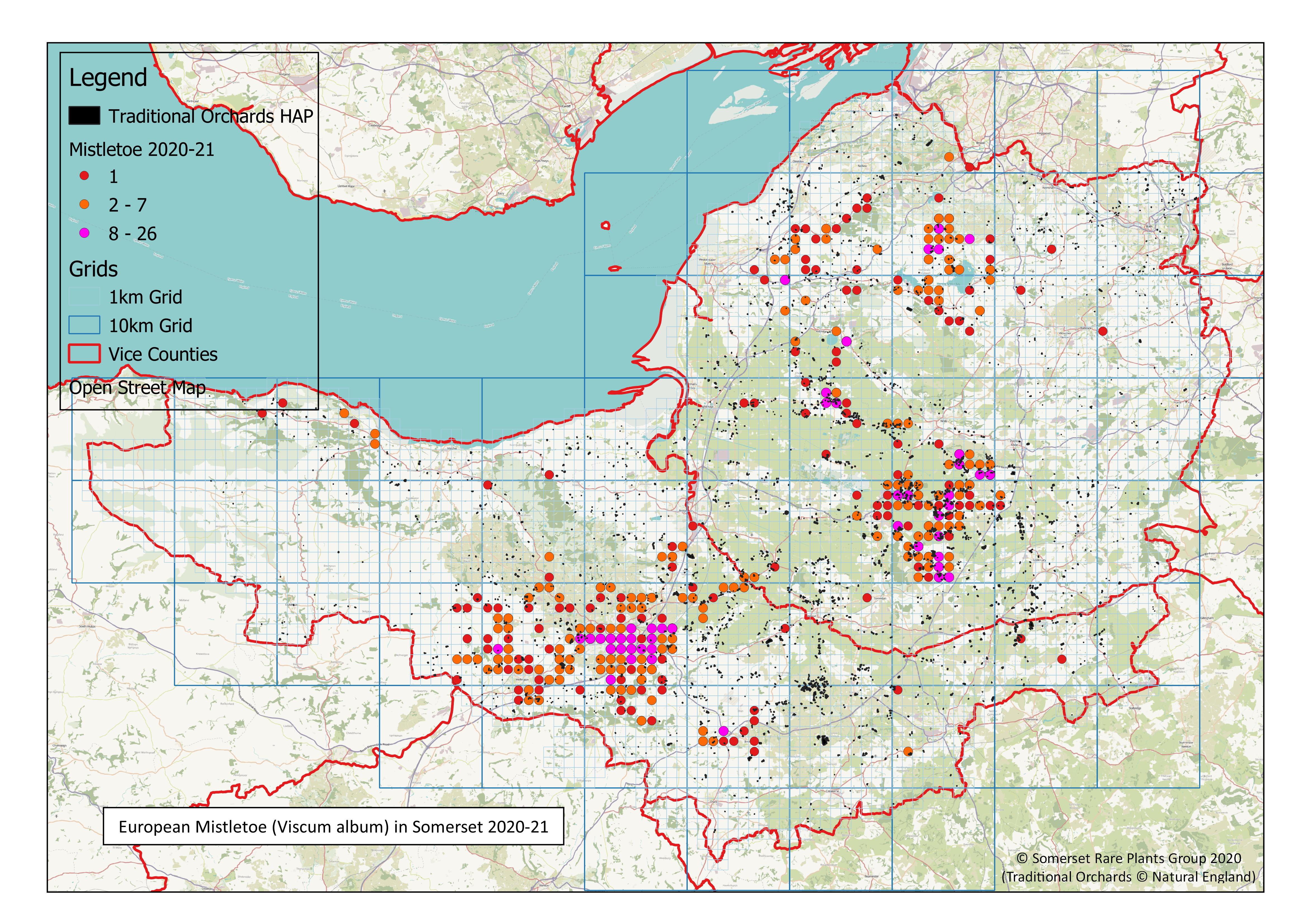Mistletoe map